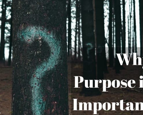 What's Your Purpose